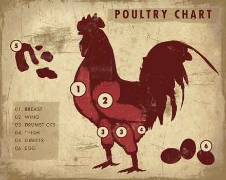 Poultry chart via etsy