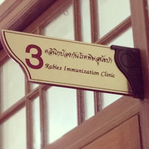 Rabies Immunization Clinic Photo